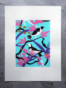 oiseau-turquoise